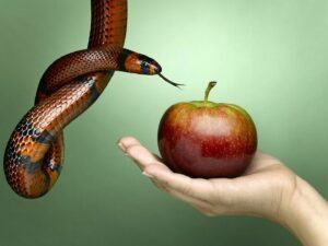 Growing Through Temptation - The first temptation