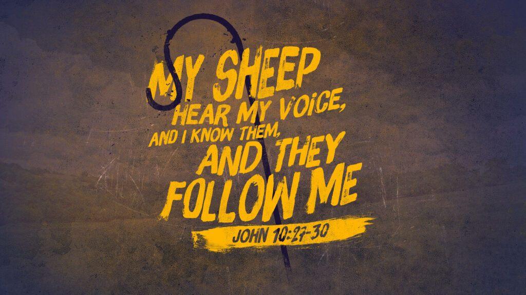 Can a Cristian Backslide - Follow the Shepherd